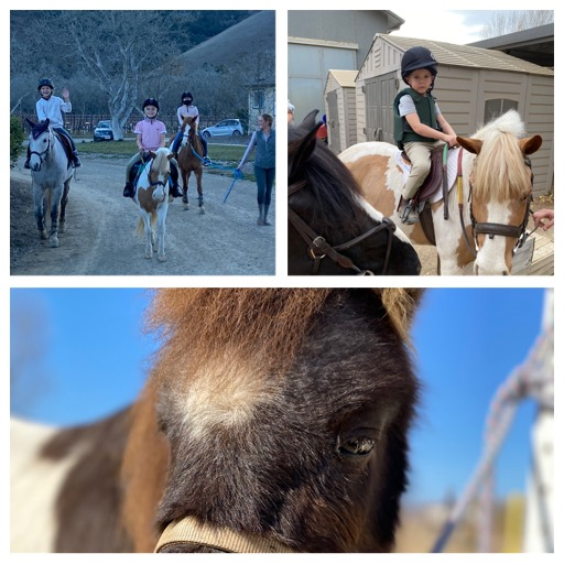 Horseback Riding Camp at Trinity Eventing